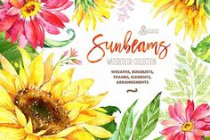 30%Off! Sunbeams. Floral Collection by OctopusArtis on @creativemarket
