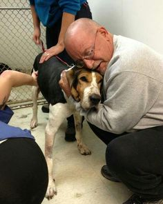 Caring family will give terminally-ill stray dog love and comfort in her final days True Friends, Best Friends, Felt Animals, Cute Animals, Dog Cruelty, Animal Tracks, Need A Hug, Adoption Center, Hound Dog