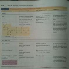 Neurotransmitters and neuromodulators, by Pearson 3/3