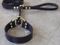 french martingale leash collar - Google Search