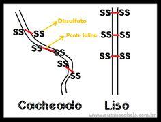 Mecanismo dos tioglicolatos nos cabelos cacheados e lisos