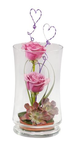 Long lasting succulents for Valentine's Day in a pretty Grace Vase.