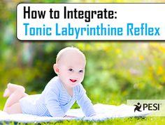 Blog: Integrating Tonic Labyrinthine Reflex