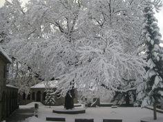 Metsovo, GR