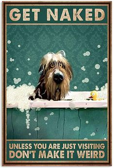 Wall Art Prints, Poster Prints, Silly Dogs, Irish Wolfhound, I Wallpaper, Framed Canvas, Funny Signs, Cute Pictures, Naked