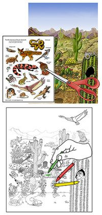 Learn about Animals and Habitats with simple, fun activities from Exploringnature.org Black And White Posters, Poster Colour, Biomes, One Color, Fun Activities, Colored Pencils, Habitats, Coloring Pages, Deserts