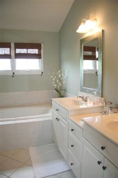 Luxury master bath with dual vanity, soaker tub & separate shower