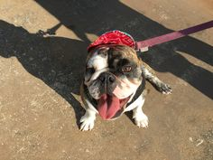 Mom made me wear this goofy hat to the beach