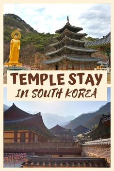 Should you do a temple stay in South Korea? Find out inside, along with details of where to go, how to book, and what to expect. The complete guide to booking a temple stay in South Korea. South Korea Travel, Asia Travel, Travel Advice, Travel Tips, Travel Guides, Beach Trip, Vacation Trips, Cities In Korea, World Travel Guide