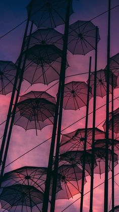 Wallpaper sperrbildschirm herbst 68 ideas for 2019 Aesthetic Backgrounds, Aesthetic Iphone Wallpaper, Aesthetic Wallpapers, Tumblr Wallpaper, Pink Wallpaper, Animal Wallpaper, Colorful Wallpaper, Flower Wallpaper, Mobile Wallpaper