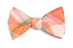 High Cotton | Camden Madras Bow Tie