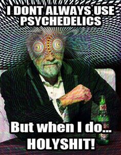 psychedelics meme dos equis guy XX