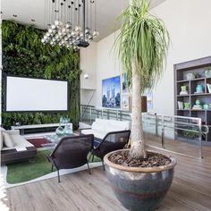 O Espaço EBM na CASA COR GOIÁS 2014, de Pedro Ernesto Gualberto e Leandra Castro, e seu grandioso jardim vertical. Lounge, E Design, Patio, Outdoor Decor, Plants, Home Decor, Landscaping Design, Wall Trellis, Concept