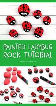 We love painting on rocks, and our colorful ladybug rocks are a great craft for adults and kids! This painted rock idea is great for the garden or you can nestle them inside house plants. Our ladybug rocks make great paperweights too! Rock Painting Patterns, Rock Painting Ideas Easy, Rock Painting Designs, Rock Painting Ideas For Kids, Lady Bug Painted Rocks, Painted Rocks Kids, Painted Garden Rocks, Painted River Rocks, Pebble Painting