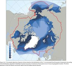 Arctic marine biodiversity index, from the CAFF SAMBR 2017 #map #arctic #biodiversity #caff