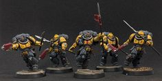 Warhammer Models, Warhammer Fantasy, Paint Schemes, Color Schemes, Guardia Imperial 40k, Miniaturas Warhammer 40k, Silly Games, Imperial Fist, Space Wolves