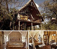 Ngong Treehouses