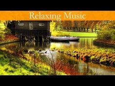 Relaxing Music,Meditation,Yoga,Relax Music☯