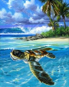 Paint by Number Kit - Baby Sea Turtle swimming in the Ocean. A Great Chris - USA Store. Paint by Number Kit – Baby Sea Turtle swimming in the Ocean. A Great Ch - Sea Turtle Painting, Sea Turtle Art, Turtle Love, Wall Art Pictures, Pictures To Paint, Baby Sea Turtles, Sweet Turtles, Turtle Baby, Paint By Number