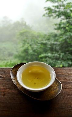Te Verde Sencha, Chai, Matcha, Tea Plant, Tea Culture, Chinese Tea, Coffee And Books, Tea Accessories, Tea Ceremony