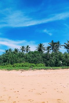 A Return To Sri Lanka (13)