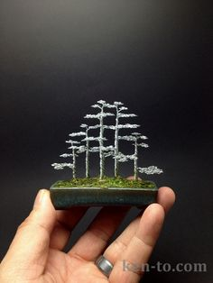 This is a 5 tree forest, compare it to my 7 tree forest and you'll see the difference 2 trees can make. 5 tree forest style bonsai sculpture by Ken To Bonsai Wire, Bonsai Plants, Bonsai Trees, Wire Tree Sculpture, Mini Bonsai, Wire Trees, Copper Art, Metal Tree, Tree Forest