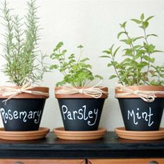 Herbs in diy chalkboard paint planters...like this idea because you can always change what your growing in that pot!... just in case its an experiment and you kill it!