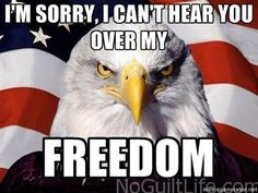 Funny 4th of July Memes | No-Guilt Life