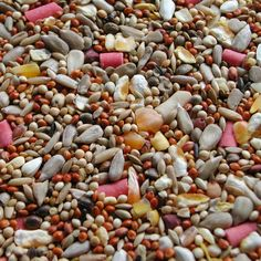 wild bird seed substrate