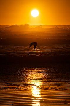 Levanta comigo meus sonhos, renova a minha esperança, aquece a minha vontade, e brilhe o meu olhar com encanto e bondade.