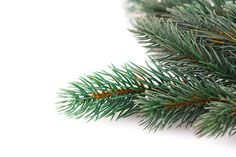 Frederick  County, MD Christmas Tree Farms