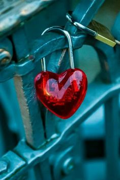 Corazón .