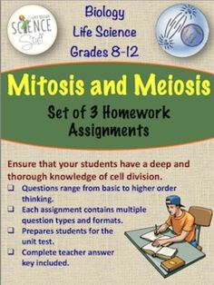 Mitosis / Meiosis / Cell Division / Set of 3 Homework Assignments