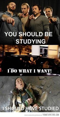 Its that time of year...And yes Loki, you should have studied! lol This is what happens when you DON'T study for a test. LOL XD