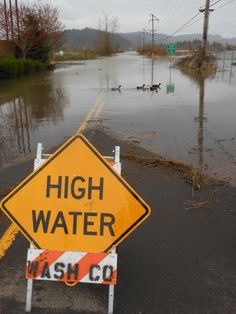 Why did the ducks cross the road?   Thanks to Forest Grove Fire & Rescue for this pic and the high water warning: Turn around, don't drown!