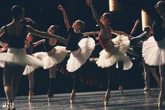 Look at how pretty the rehearsing swans are. (Pacific Northwest Ballet)