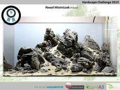 #Hardscape Challenge 2015 ! congrats !  pin by Aqua Poolkoh