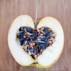bird seed cakes integrated in an apple feed the birds in winter. it's so easy to make! in English and German. It's just apples, coconut oil, and bird seed.