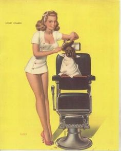 Pin up dog grooming