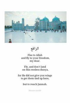 Fly, dont land on this restless dunya.  #fleetoAllah