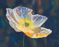 """Opalescent Poppy"" by Lauren Knode Pastel ~ 19 x 24"