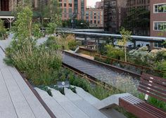 The Highline New York photographed by Iwan Baan | Featured on Sharedesign.com