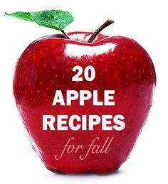 Roundup: 20 Apple Recipes for Fall ~ Great for apple picking!