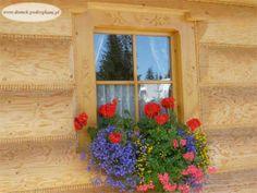 Lato w domku góralskim Bright, Windows, Plants, Summer, House, Summer Time, Home, Flora, Haus