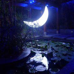 private moon in taipei by leonid tishkov /leonid tishkov