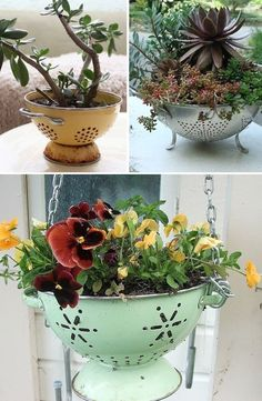 Because they've already got the holes for drainage, they're perfect for potting plants! I love the idea of using a colorful vintage pasta strainer. Lovely for indoors or out.
