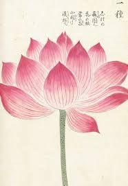 Resultado de imagen de japanese art flower