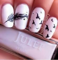 feather & birds design.