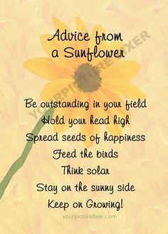 quote thinking of you sunflower - Google zoeken