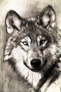 Shadow Wolf Cross Stitch Pattern by SakuraCrossStitch on Etsy